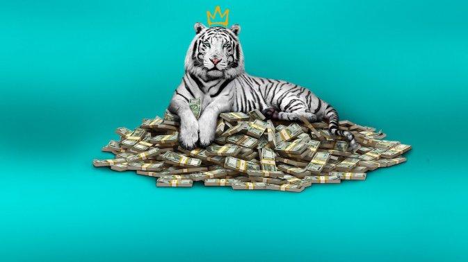 La Tigre Bianca, la recensione del film originale Netflix