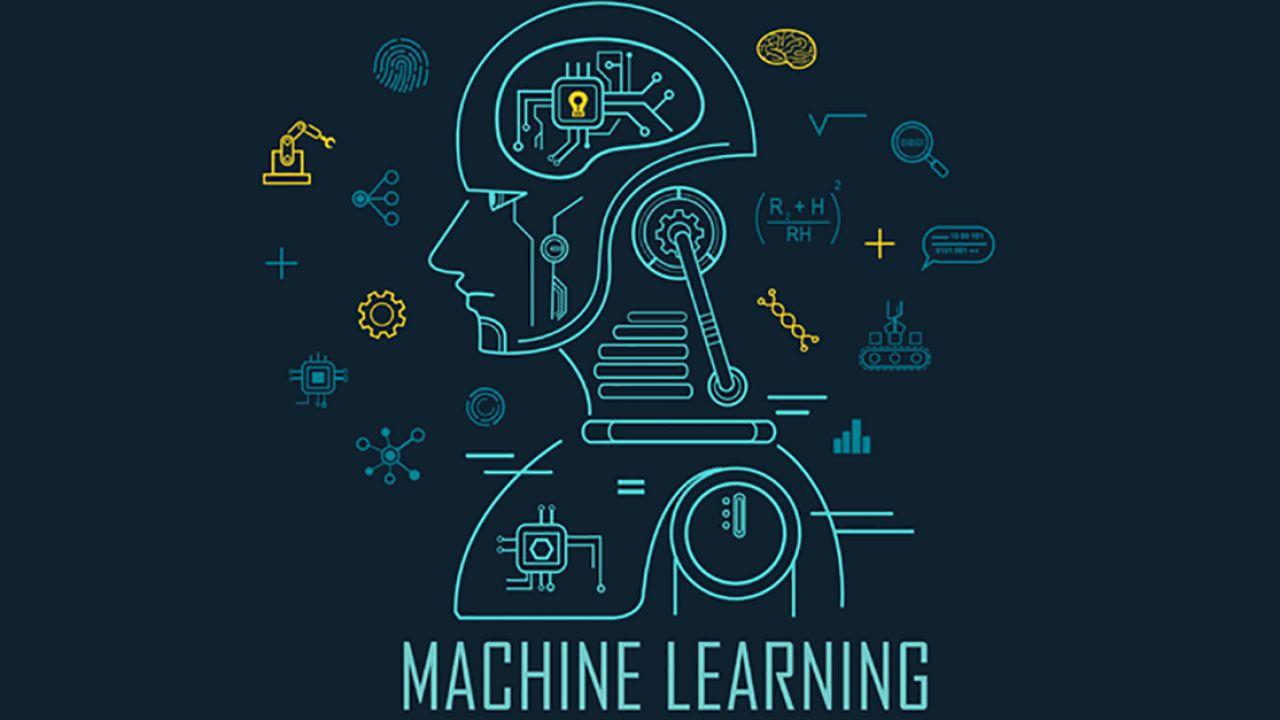Dalla birra alle orche, l'incredibile versatilità del machine learning