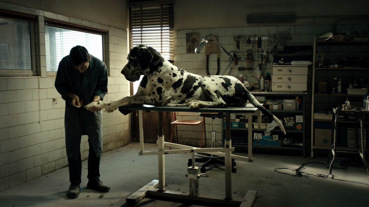 Dogman trionfa ai Nastri d'Argento 2018: premiata un'industria in ottima salute