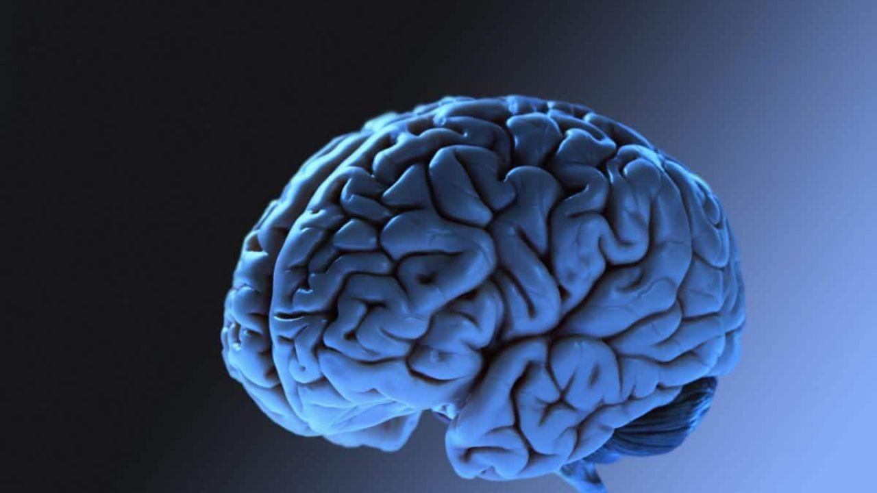 speciale Le 8 cose che non sapevi sul nostro incredibile cervello