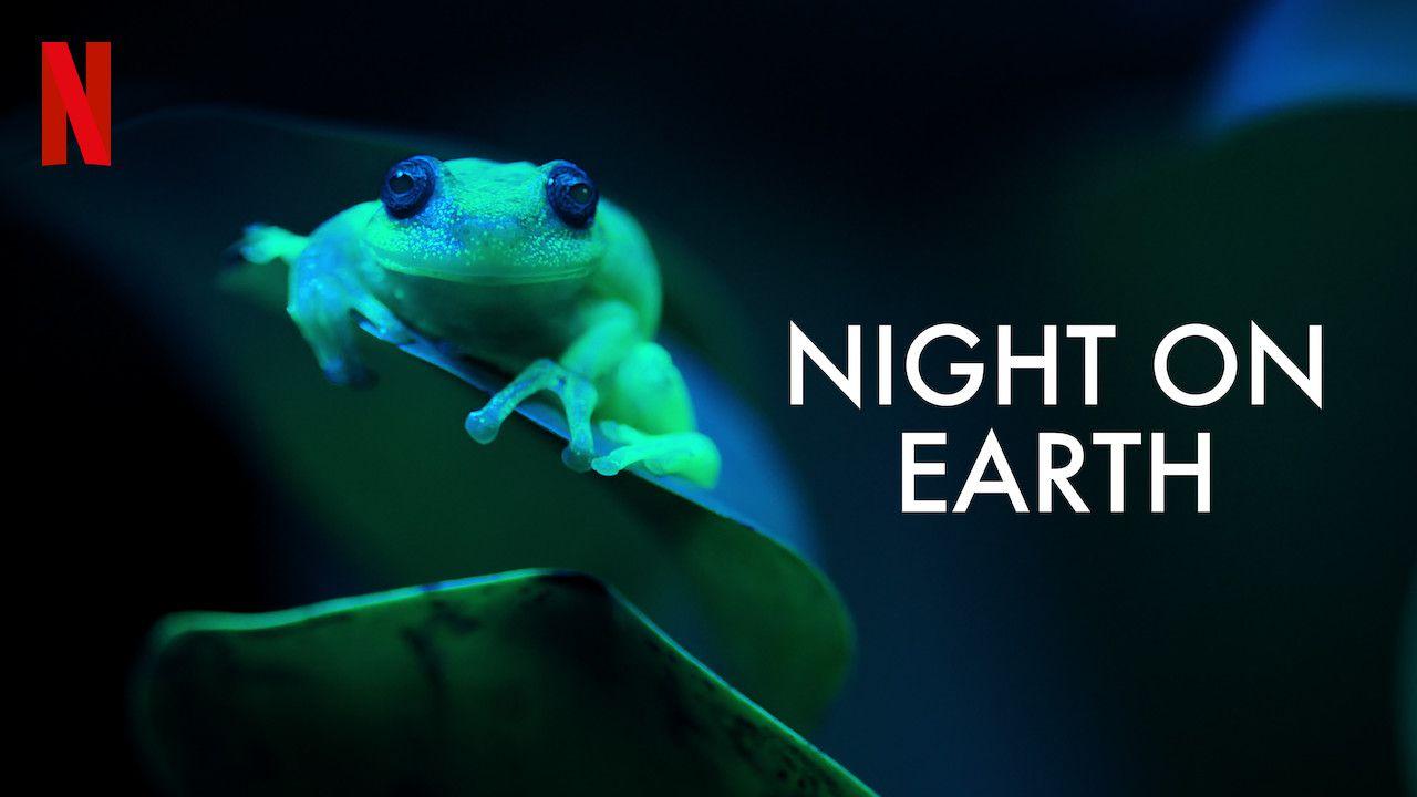 recensione Notte sul pianeta Terra: recensione della spettacolare docu-serie Netflix