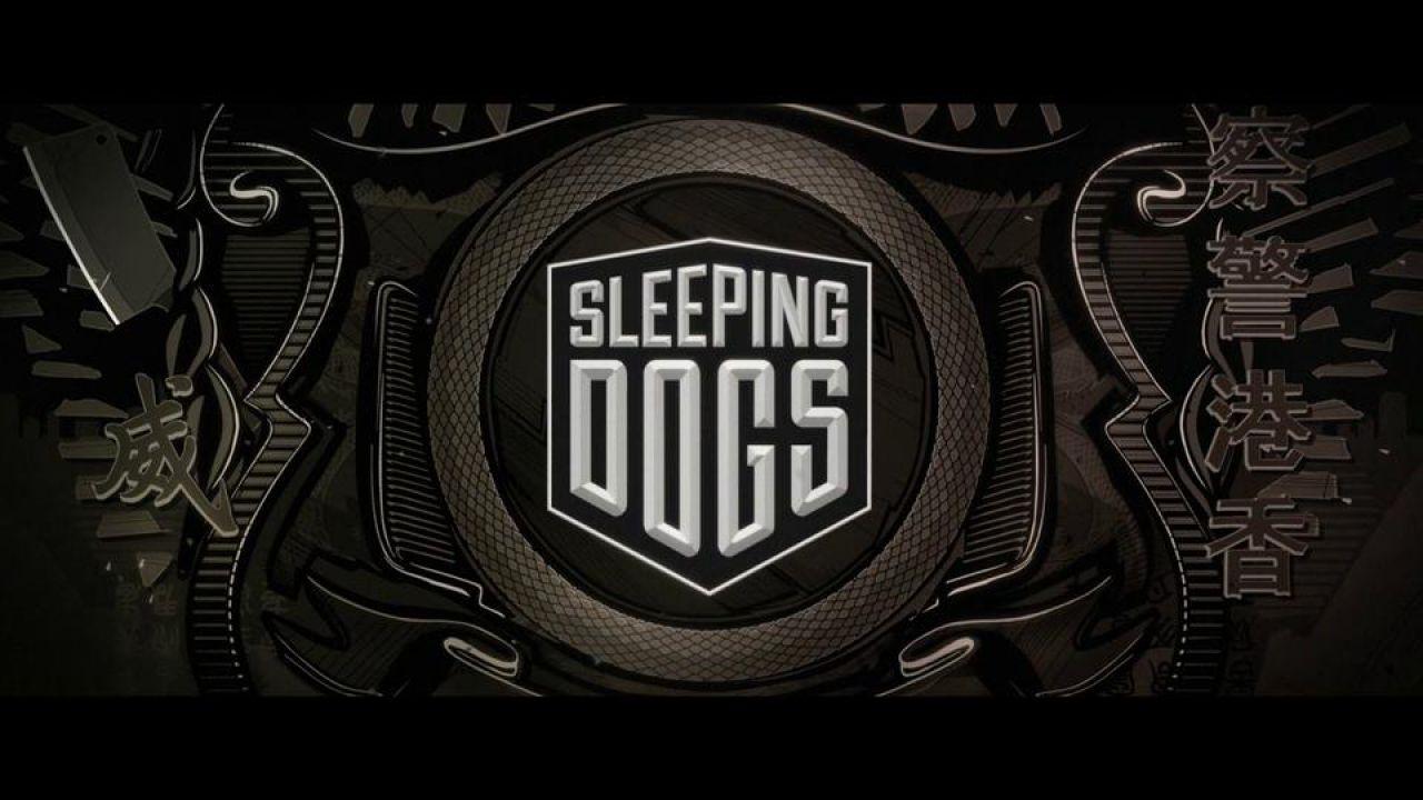 hands on Sleeping Dogs