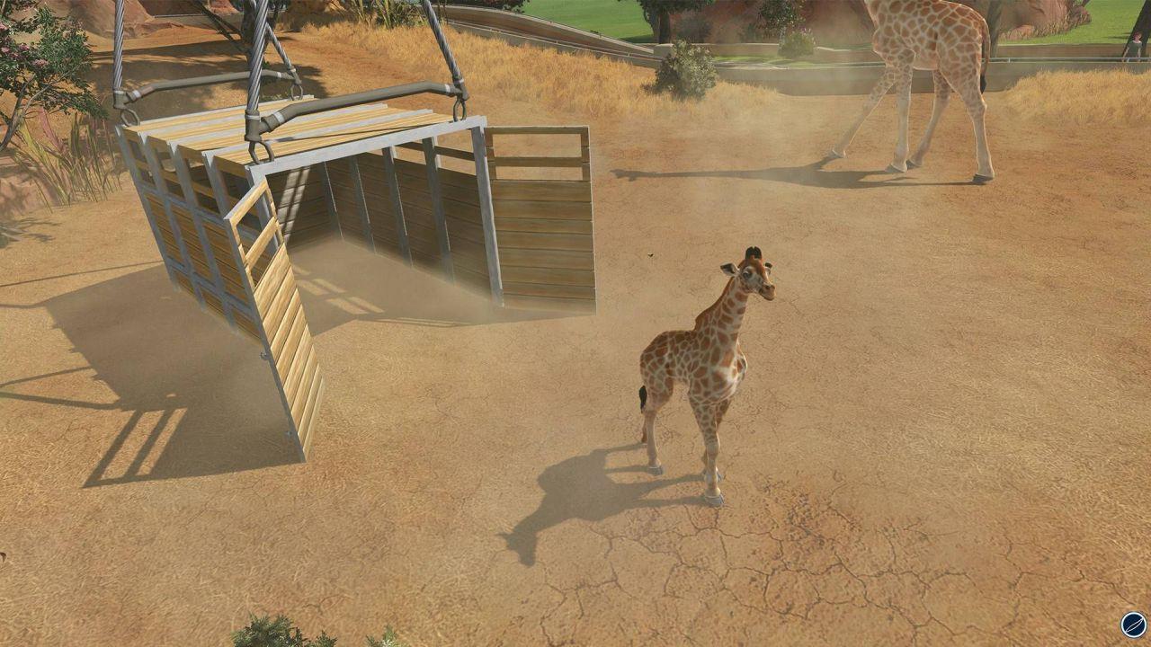 anteprima Zoo Tycoon