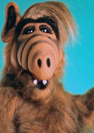 Alf - Serie tv