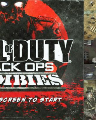 Call of Duty: Black Ops Zombie