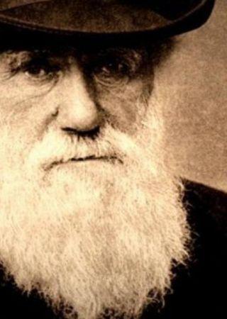 Charles Darwin Movie