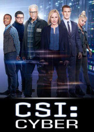 Csi: Cyber - Stagione 2