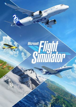 Flight Simulator 2019
