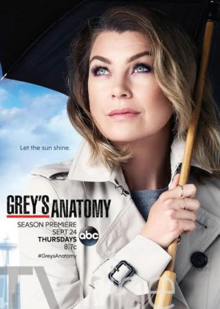 Grey's Anatomy - Stagione 12