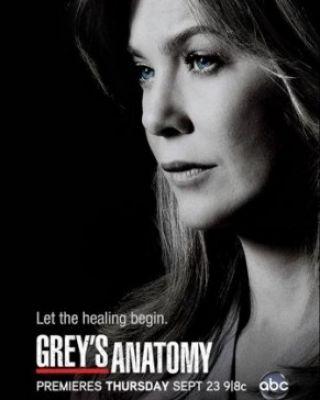 Grey's Anatomy - Stagione 13