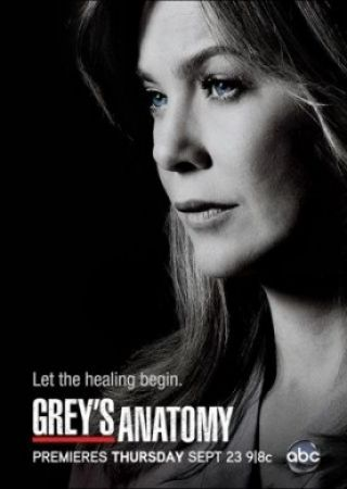 Grey's Anatomy - Stagione 13