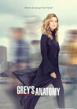 Grey's Anatomy - Stagione 16