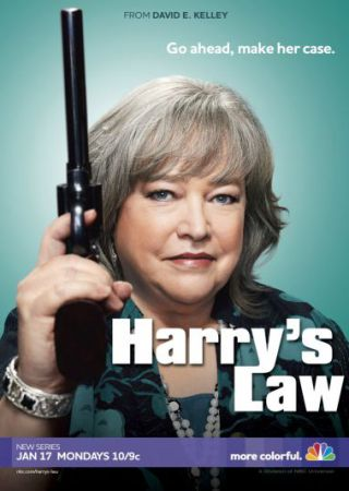 Harry's Law - Stagione 1