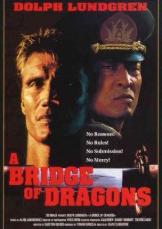 Il ponte del dragone