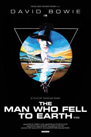 L'uomo che cadde sulla Terra