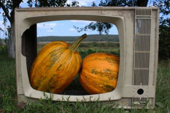 Serial TV News