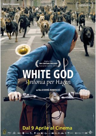 White God - Sinfonia per Hagen
