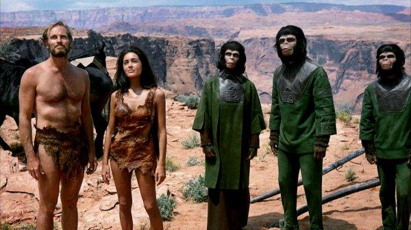 Torino Film Festival: Il pianeta delle scimmie