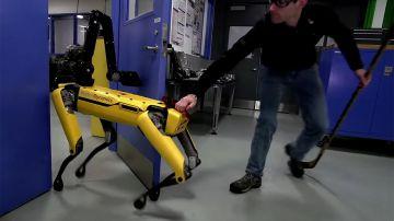 Video il robot di boston dynamics non risponde alle provocazioni umane