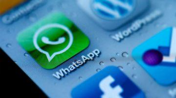 Video whatsapp sulle orme di msn messenger: in arrivo i trilli?