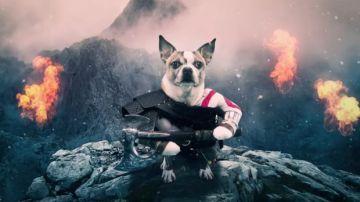 Video il nuovo god of war? sì, bello, ma dog of war è ancora meglio!