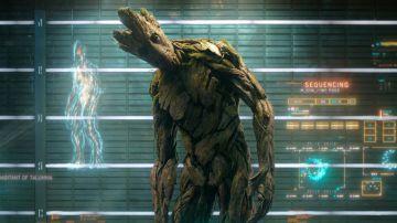 Video infinity war: le star dei guardiani della galassia non sapevano la differenza tra i groot