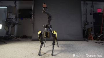 Video il robot di boston dynamics spot ha imparato a ballare bruno mars