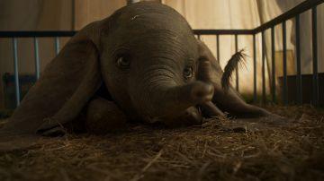 Video dumbo: disney pubblica il full trailer in lingua italiana del film diretto da tim burton