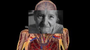 Video susan potter ha dato il suo corpo alla scienza, il suo cadavere 'vivrà per sempre'
