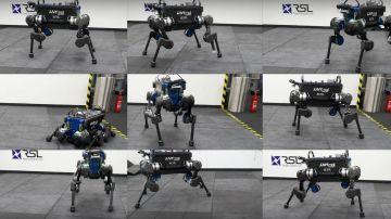 Video i ricercatori hanno addestrato un cane robot per rialzarsi dopo una caduta