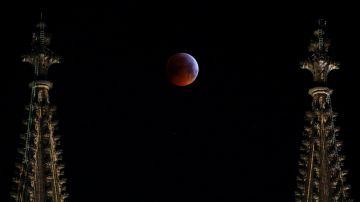 Video la luna è stata colpita da un meteorite durante l'eclissi totale del 21 gennaio (video)
