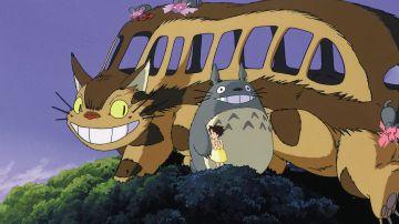 Video il gattobus de il mio vicino totoro diventa radiocomandato!