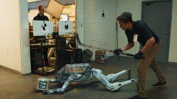 Video un robot viene maltrattato in un video che diventa virale. è falso, ma fa riflettere