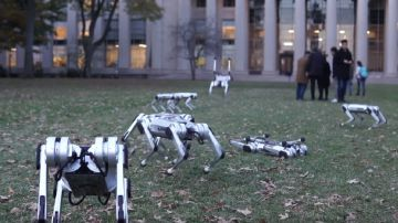 Video guardate 9 robot mini cheetah del mit divertirsi in un parco a cambridge