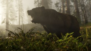 Video in red dead redemption 2 si può evitare l'attacco di un orso guardandolo negli occhi
