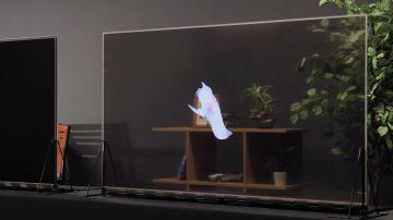 Video panasonic ha ufficialmente iniziato a vendere i suoi tv oled trasparenti