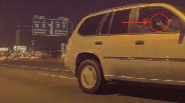 Video pazzo scatenato spara ad un'auto in corsa, ma la tesla ha registrato tutto