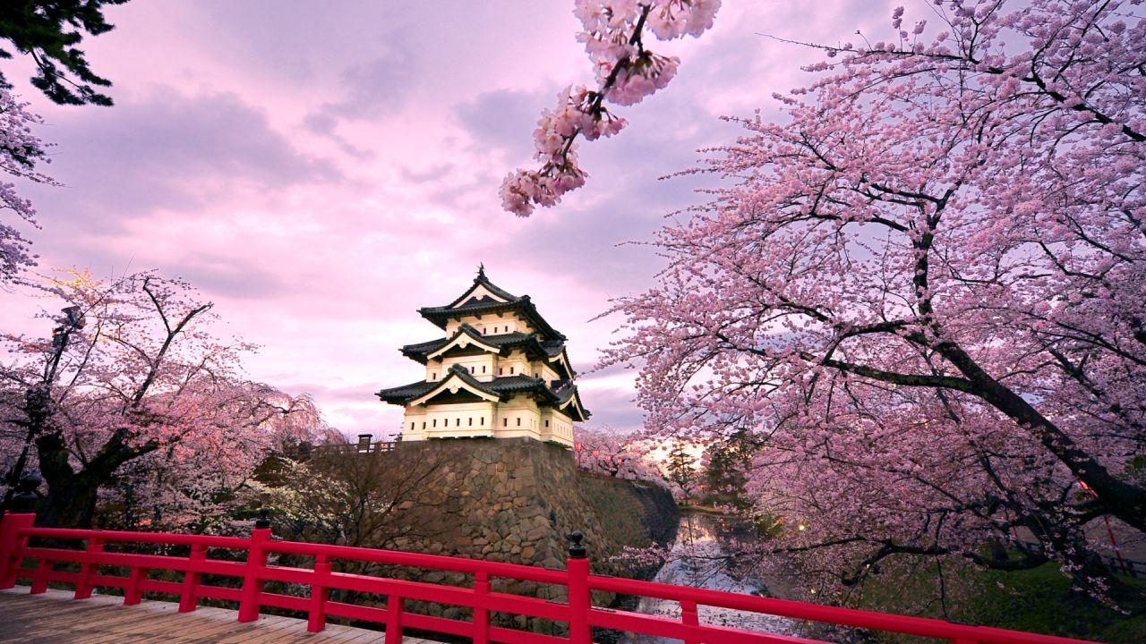 37 sviluppatori giapponesi stilano la loro lista dei migliori giochi dell'anno
