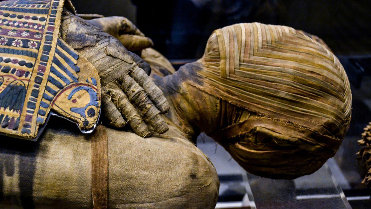 Alcuni celebri faraoni sono pronti per una pomposa parata che li porterà in un nuovo museo