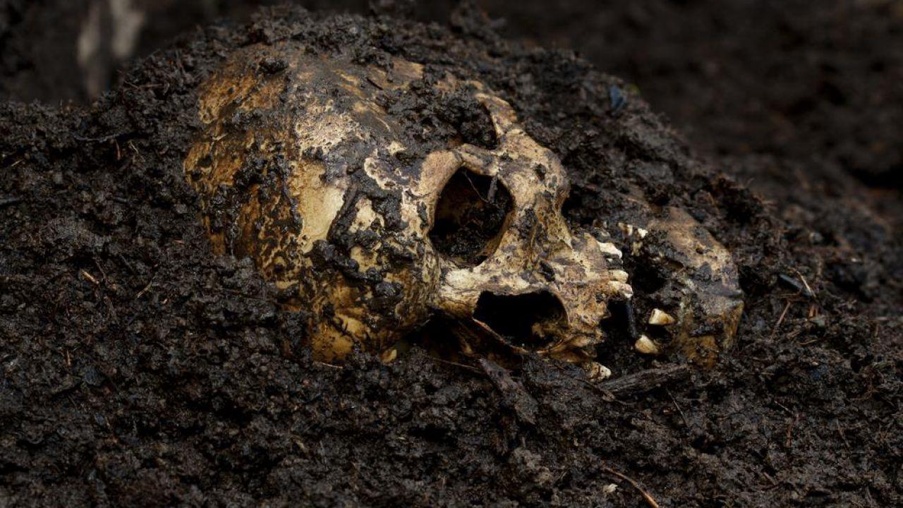 Alla scoperta delle fattorie dei corpi, luoghi dove i cadaveri vengono lasciati a marcire