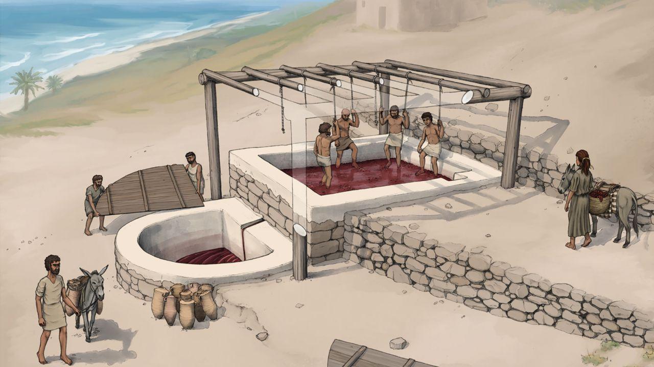 Anche 2.700 anni fa veniva prodotto il vino e questa scoperta ci mostra in che modo