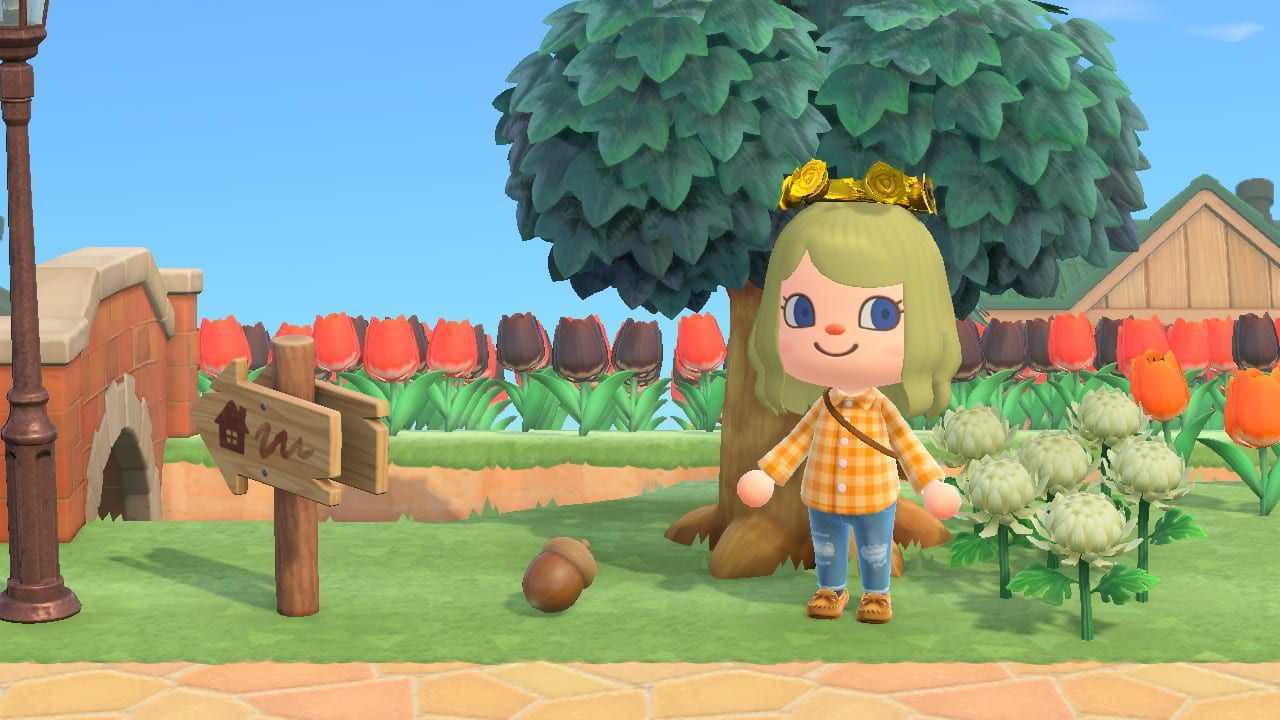 Animal Crossing New Horizons: come ottenere le Ghiande