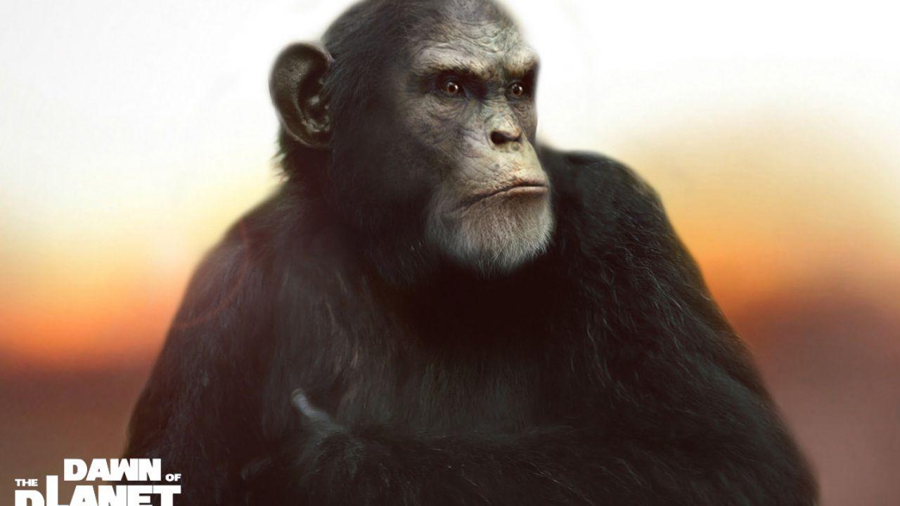 Apes Revolution - Il pianeta delle scimmie: tensione tra Cesare e gli umani nella nuova clip