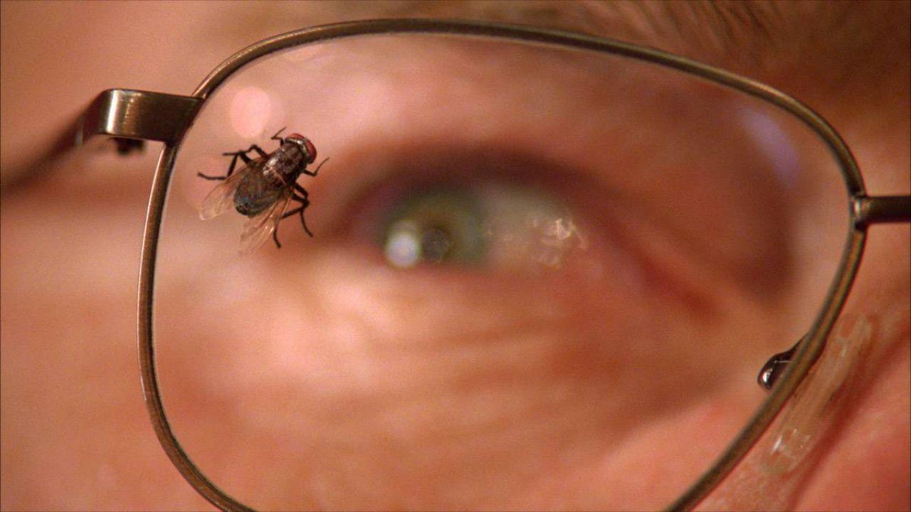 Breaking Bad e l'episodio della mosca: significato e origini della puntata