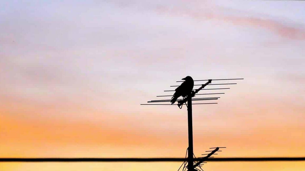 Come scegliere l'antenna per il digitale terrestre?