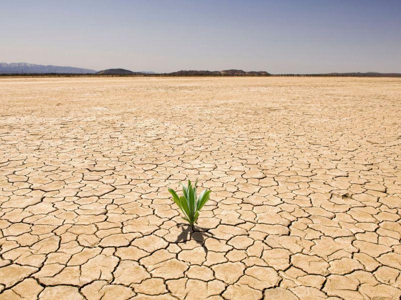 Diverse parti del Nord America si stanno dirigendo verso una 'mega-siccità'