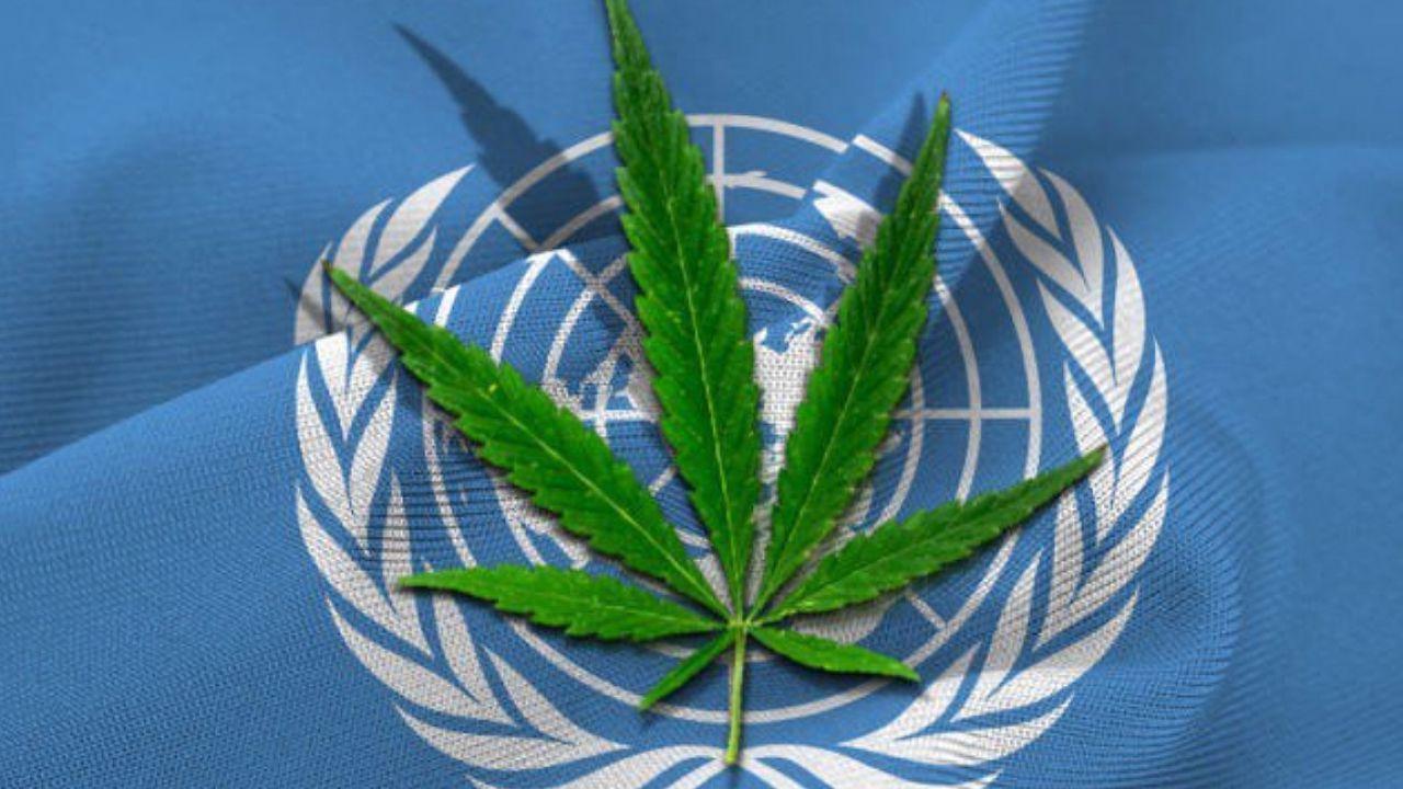 È stato scoperto un altro effetto benefico della cannabis negli adulti