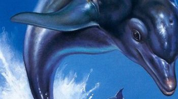 Ecco The Dolphin: è in lavorazione un reboot della serie?