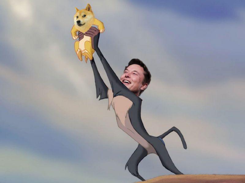 Elon Musk rompe il silenzio su Twitter e consiglia di investire in Dogecoin