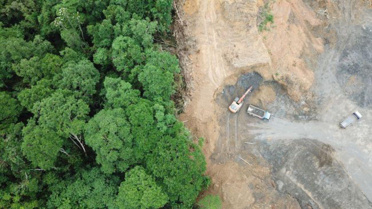 Foresta amazzonica: deforestazione aumentata del 278% rispetto allo scorso anno